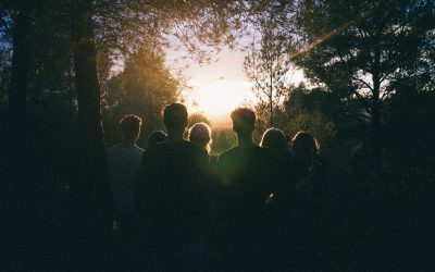 silhouette-of-group-of-people-between-tree-line-939328
